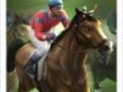 Cai Curse cu cai