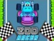 Curse de masini la Zoo