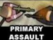 Primary Assault