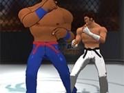 Jocuri cu arta luptelor libere 3d