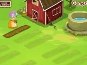 ferma de ierburi verzi