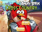 masini de lemn angry birds
