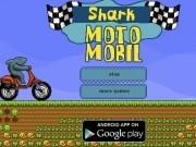 rechinul de curse pe motocicleta